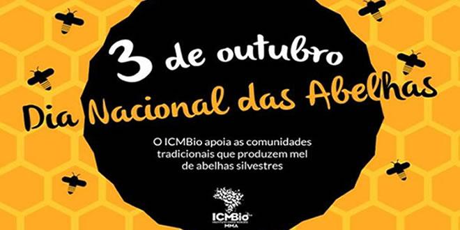 ICMBIO INCENTIVA A PRODUÇÃO DE MEL DE ABELHAS SILVESTRES